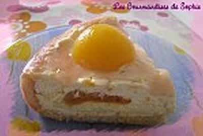 Entremet à l'abricot et à la vanille - Photo par Sophie21