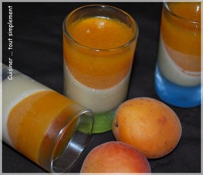 Panna Cotta au chocolat blanc et abricot - Photo par cuisinertoutsimplement