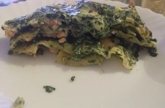 Lasagnes de saumon aux épinards - Photo par aureliY7Ux