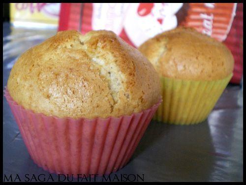 Muffins aux  chocolats - Photo par SagaM