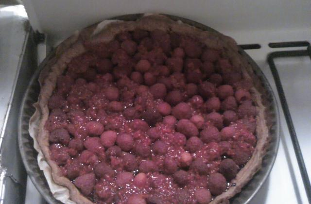 Tarte framboises et pâte à tartiner - Photo par michel9L