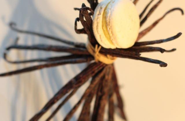 Macaron vanille - Photo par paul80
