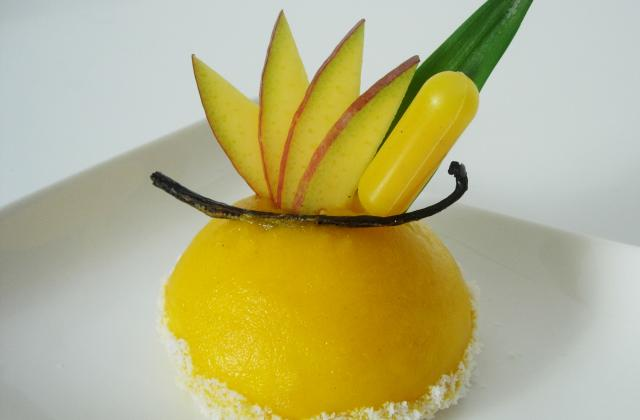 Entremet vanille bourbon, fruits exotiques, mangue, noix de coco - Photo par Lilizinz