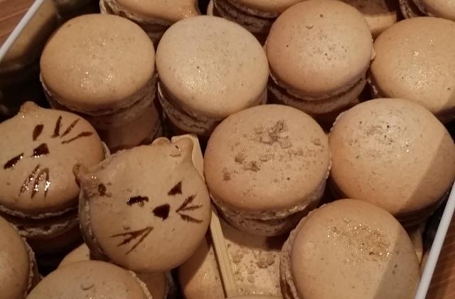 Macarons pain d'épice - foie gras - Photo par Invité