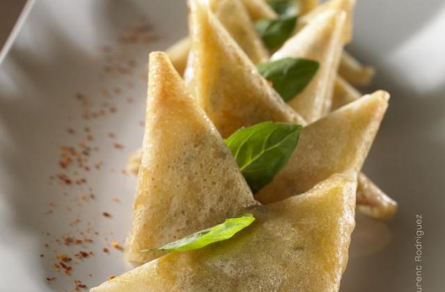 Petits triangles croustillants aux légumes et aux deux fromages Giovanni Ferrari - Photo par Quiveutdufromage.com