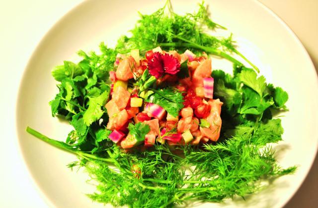 Tartare multicolore aux deux saumons - Photo par les becs fins