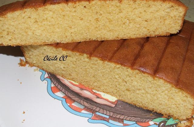 Gâteau super rapide à la vanille - Photo par Cécile CC