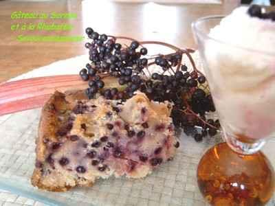 Gâteau sureau et rhubarbe à la ricotta - Photo par fabienra