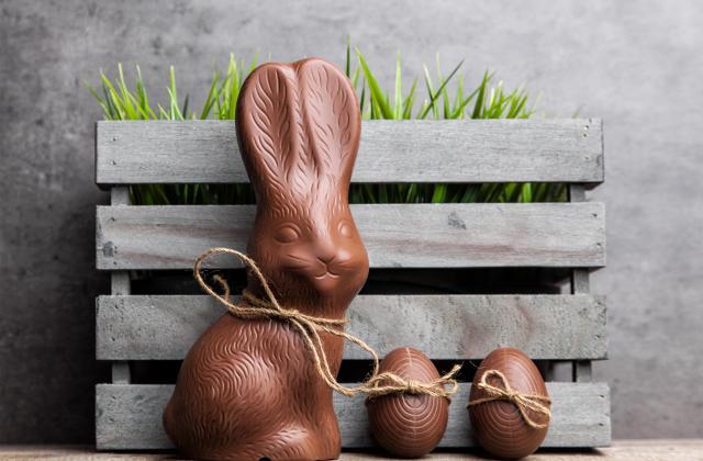 Lapin de Pâques en chocolat - Photo par 750g