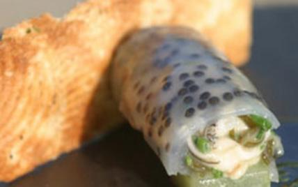 Cannelloni d'huîtres Arcachon Cap Ferret au caviar d'Aquitaine, panini d'huître - Photo par AAPrA
