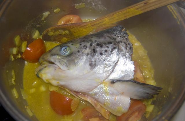 Tête de saumon comme à Goa. - Photo par mamikele