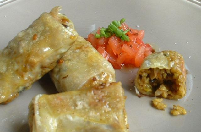 Rouleaux de légumes au boulgour à l'indienne - Photo par Saveurs et Gourmandises d Eugénie