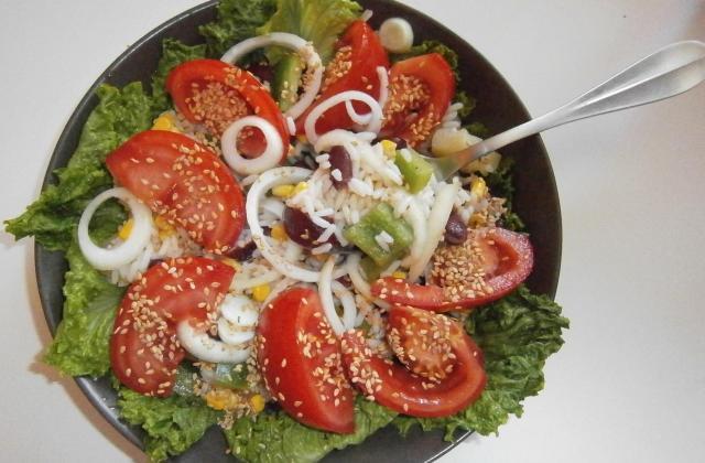 Salade composée, riz, maïs, poivrons, haricots rouges et tomates - Photo par delicesdunenovice