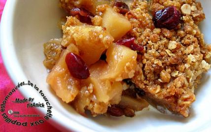 Crumble aux céréales, pommes et canneberges - Photo par TitAnick