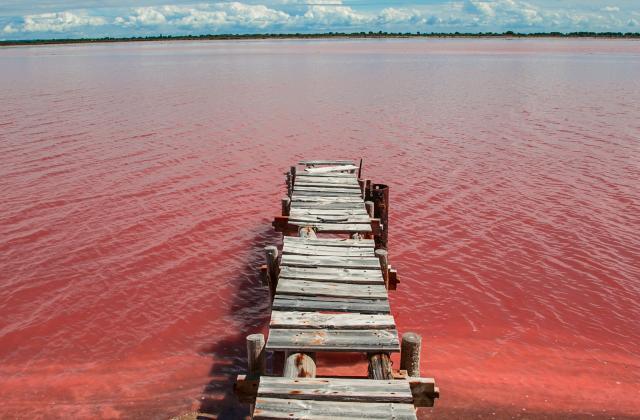 8 trucs à savoir sur la récolte du sel - Photo par 750g