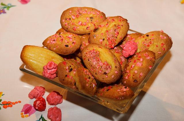 Madeleines croquantes et colorées - Photo par jackieyZ