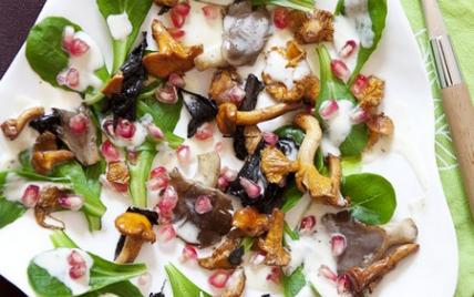 Une salade de mâche aux champignons et à la grenade.... façon tableau de peintre - Photo par frederjdU
