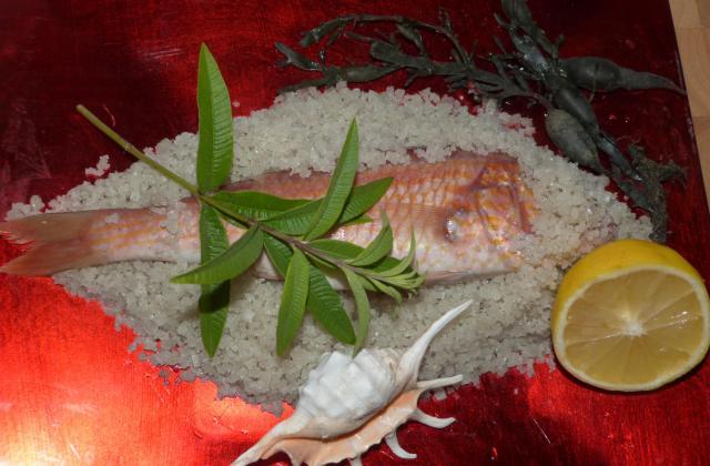Grondin perlon en habit d'algues, croûte de sel, sauce citronnée à la verveine - Photo par CHRIS DE TOULOUSE
