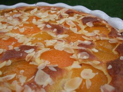 Gâteau abricots et amandes façon clafoutis - Photo par christgOm