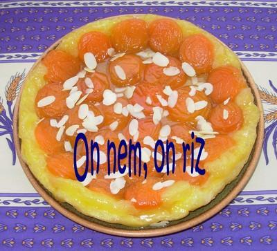 Tatin aux abricots - Photo par paulinc7