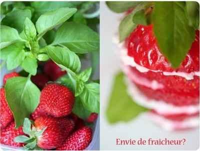 Antipasto de fraises, fromage de chèvre frais et basilic - Photo par 750g