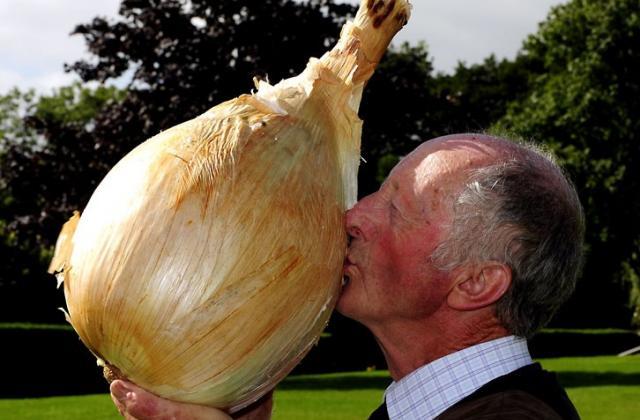 Top 10 des plus gros légumes du monde  - Photo par Bérengère