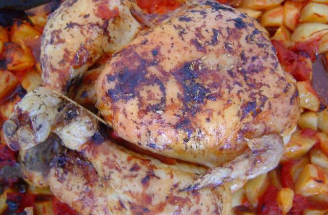 Poulet rôti aux herbes de Provence - Photo par titoulfr