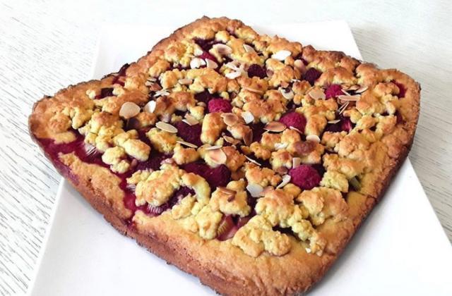 Cookie-crumble rhubarbe et framboises - Photo par Dany33