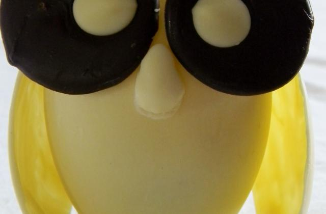 Chouette garnie au chocolat blanc - Photo par sophie