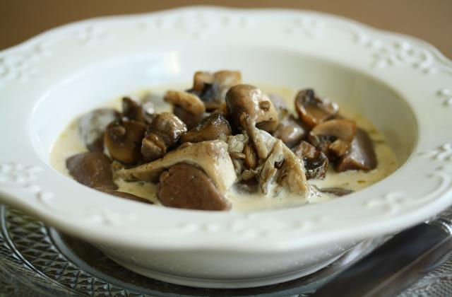 Gnocchis aux Marrons, pleurotes et bouillon crémé au roquefort - Photo par fabricWcg