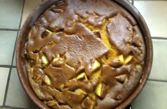 Gâteau de citrouille, coco et pomme - Photo par elodieL9