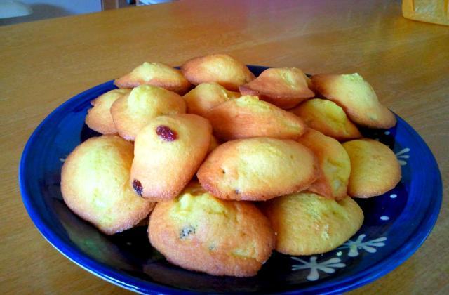 Madeleines pommes citrons raisins - Photo par mathilu2