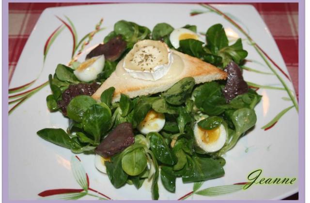 Salade de chèvre chaud et gésiers confits ! - Photo par Jeanne la malice