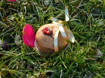 Muffins à la crème de marron - Photo par lucilen9