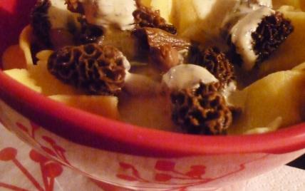 Tagliatelles sauce moutarde & morilles - Photo par moibou
