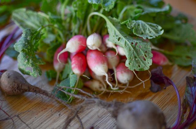 C'est quoi les fruits et les légumes de saison en mai ? - Photo par 750g