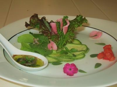 Pousses  de salades - Photo par luccetatou