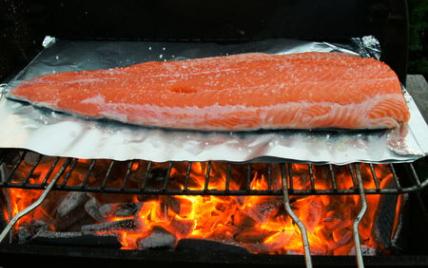 Saumon gros sel - Photo par chocolt