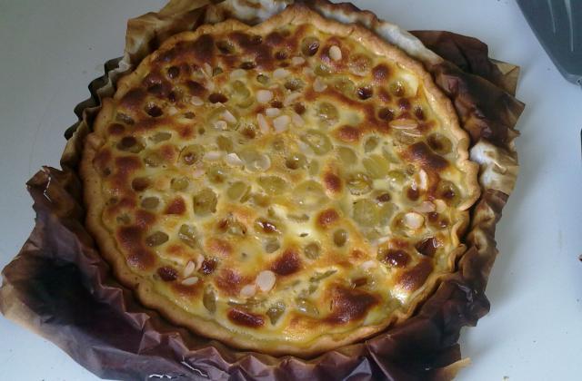 Quiche! ont fait une tarte aux raisins - Photo par jbchris