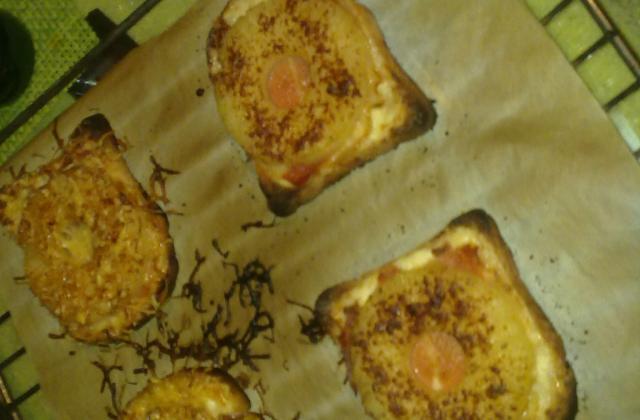 Toast ensoleillé ananas et jambon - Photo par jbchris
