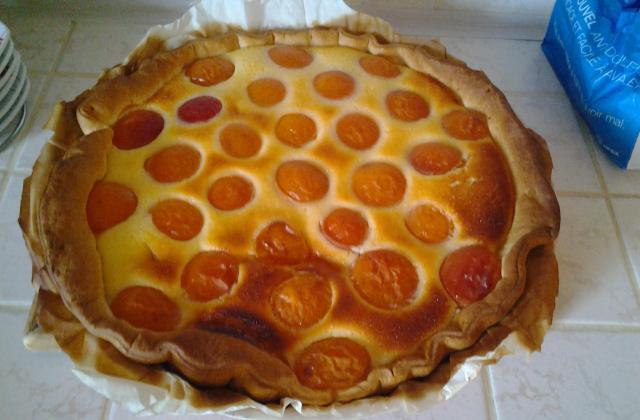 Tarte abricots et fromage blanc - Photo par xXClaiireXx