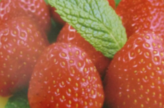 """Tartelettes """" light"""" aux fraises - Photo par severiTu"""