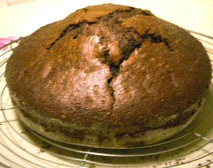 Gâteau hyper simple au Nutella - Photo par sandriLHu