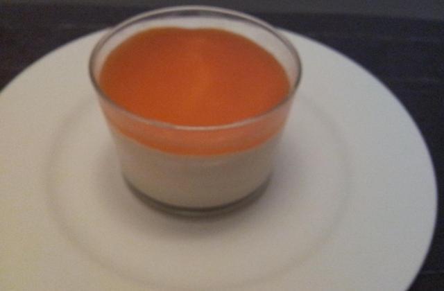 Mousse à l'abricot - Photo par kas064