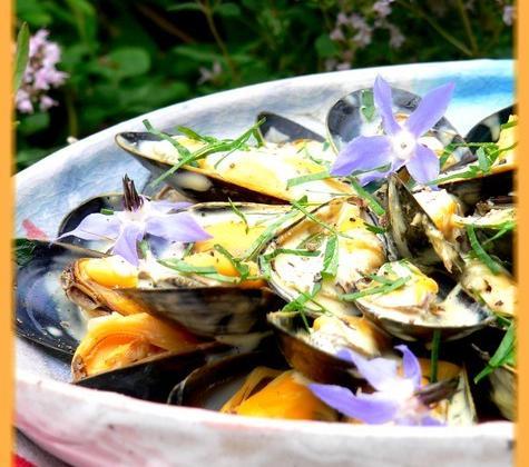 Salade de moules de bouchot, sauce légère au curry - Photo par Chef Damien