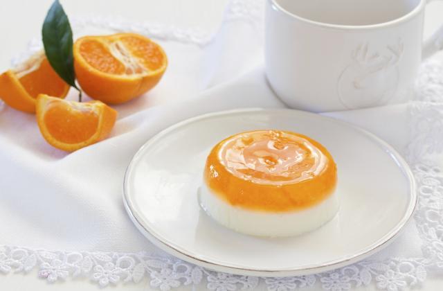 Panna cotta à l'orange - Photo par 750g