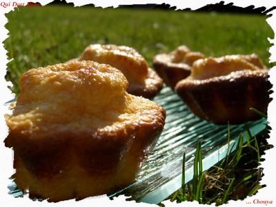 Petits gateaux coco, chocolat, amandes (sans beurre) - Photo par chouya