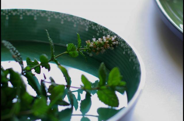 Courgettes à l'escabèche, menthe basilic, feta, citron confit - Photo par talons