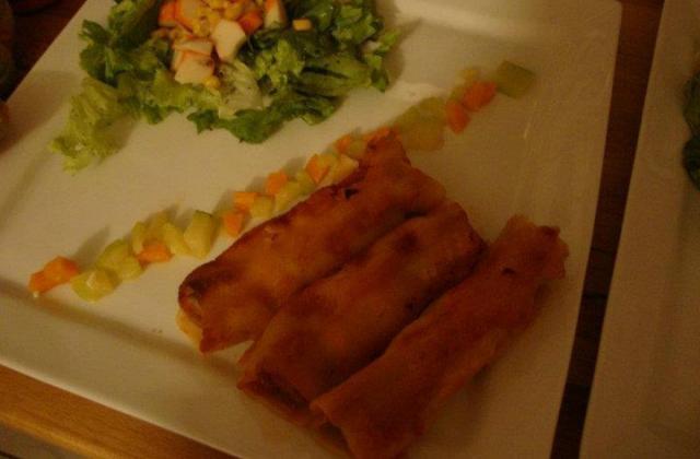 Cannellonis aux légumes et viande hachée - Photo par la cuisine de doudou