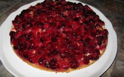 Gâteau renversé aux canneberges - Photo par petit-hobbit